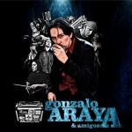 Gonzalo Araya