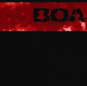 BOA 2